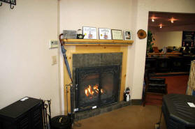 Petite! Two Harbors Direct Vent Gas Fireplace by Kozy Heat